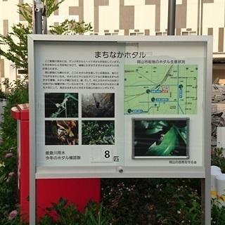 イオン 岡山 ホタル00aa.JPG