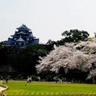 岡山城 後楽園l 桜 sd.png