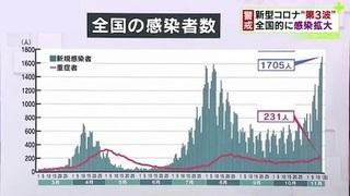 日本感染者数 1114Hu.jpg